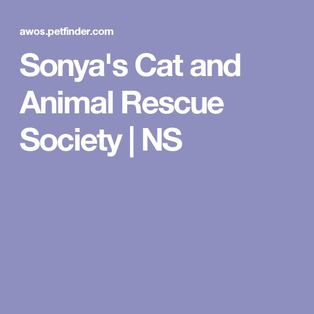 Sonya's Cat and Animal Rescue Society | NS