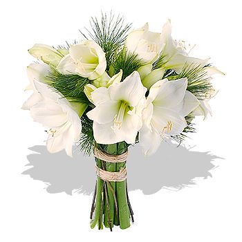 Winter+Wedding+Bouquets | Surprising Wedding Flowers For Winter Impressive Amaryllis For Wedding ...
