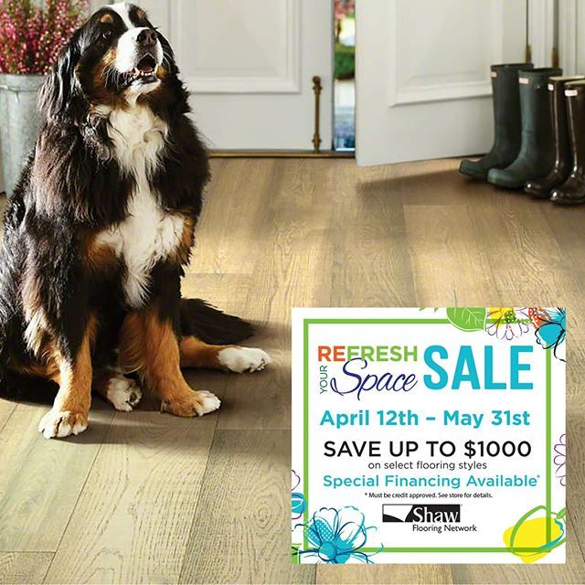 Are Your Pets And Kids Tracking In Mud And Water From All Those Spring Showers No Worries We Have You Covered With Spi Spring Shower Flooring Carpet Flooring
