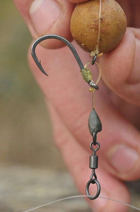 Elliott Gray on the Big Hook Rig - Articles - CARPology Magazine