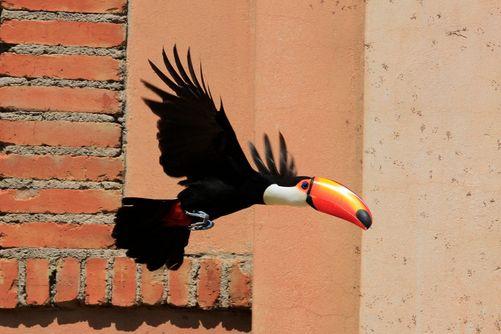 Johannesburg, South Africa | Karl Daniels/National Geographic