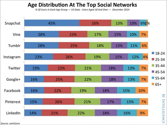 Demographic Breakdown for Each Different Social Network
