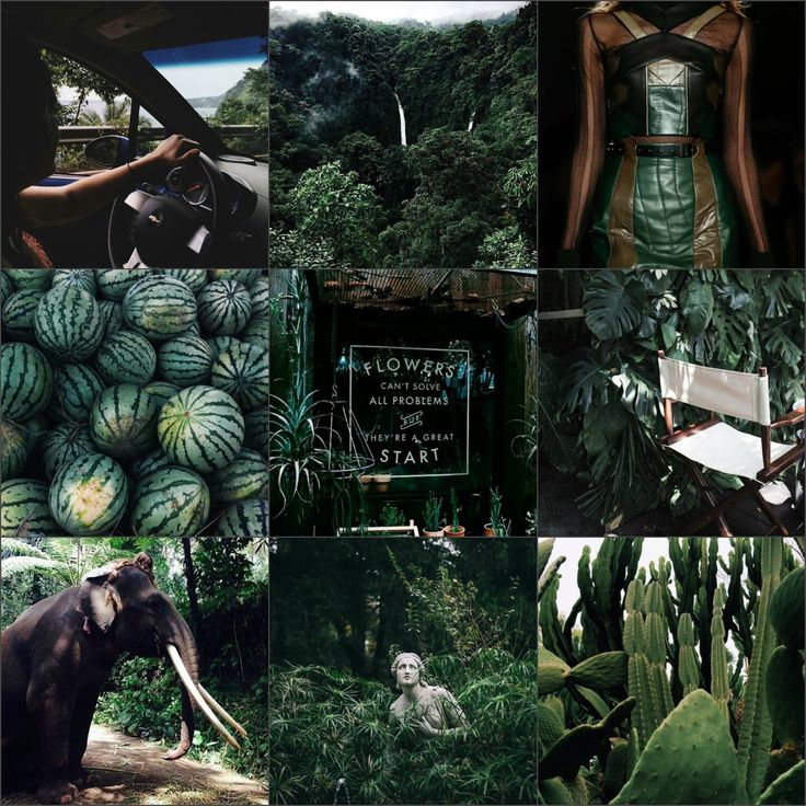 dark tropical green