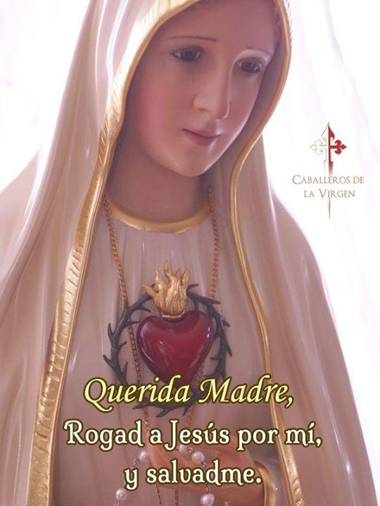 Querida Madre ayúdame para que mi amor crezca cada vez más hacia a tu amado hijo Jesús.