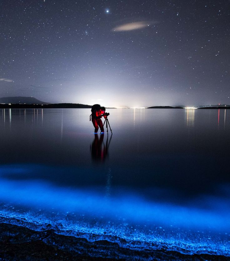 The definitive guide for photographing the unpredictable and rare bioluminescence at the seashore