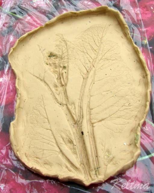 """Мастер-класс """"Отливка растений из гипса по пластилину"""" - Отпечатки листьев, цветов, ладошек - Поделки из гипса - Каталог статей - Рукодел.TV"""