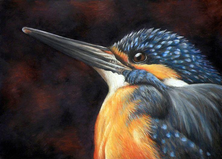 Wildlife Art, Pet Portraits & Portraits by New Zealand Artist, Karen Neal. Originals, Giclee Prints, Greeting Cards & Commissions.