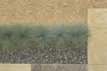 Heres a mix of decomposed granite (top) and pea gravel (bottom), separated by a line of blue fescue (Festuca glauca).