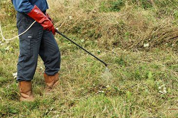 Getting started on your allotment / RHS Gardening