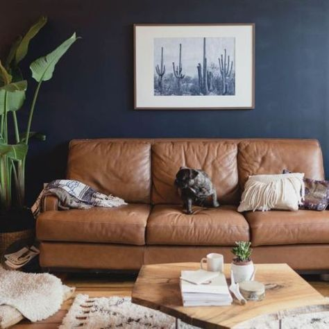 Navy living room walls and brown leather couch.