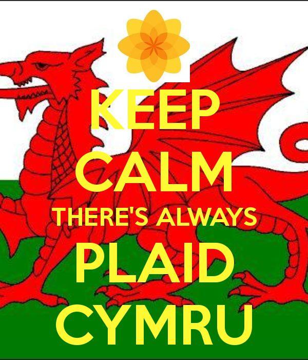 plaid cymru poster - Google Search