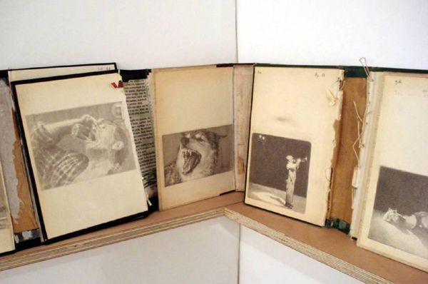 Christos Venetis, Anemic Archives, Drawing on book covers (Installation detail)