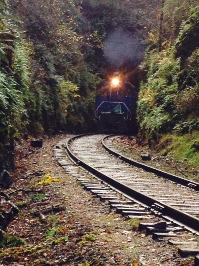 Travel | Washington | Attractions | Train Ride | Fall Foliage | Fall Foliage Train Ride  |