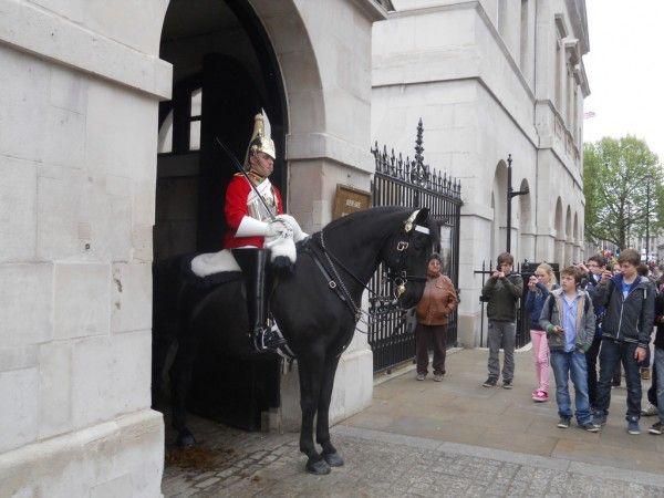 Muzeja apsardze