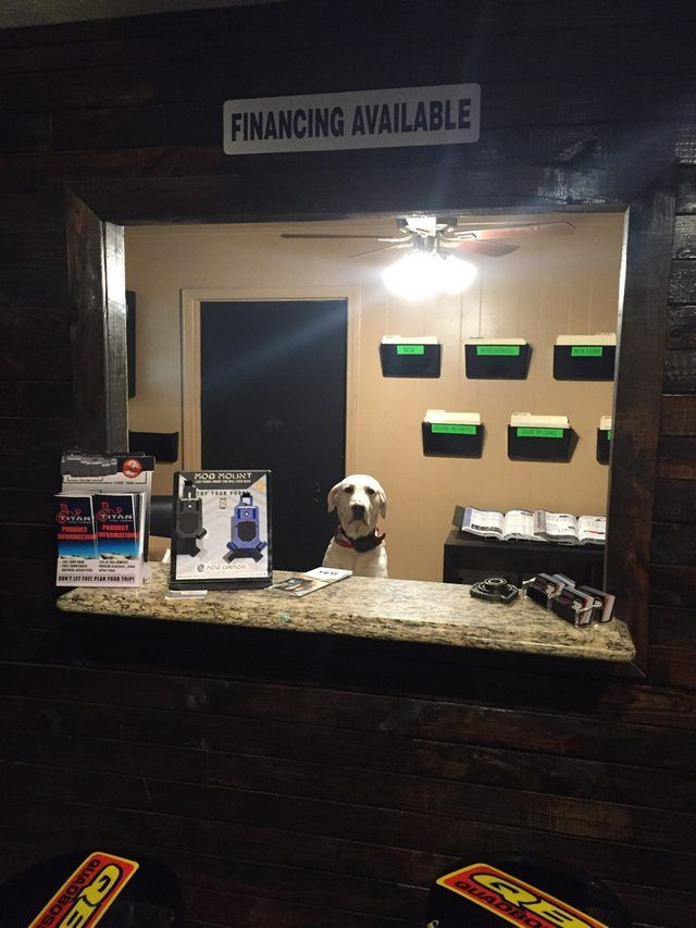 Walked into a local ATV shop to find a part for my bike...the blonde receptionist was cute but didn't seem to speak much. http://ift.tt/2nnDCRi