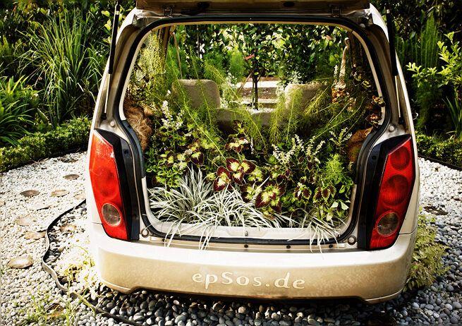 Ideas Orgánicas que Cultivan un Huerto para el Jardín Verde | epsos.de