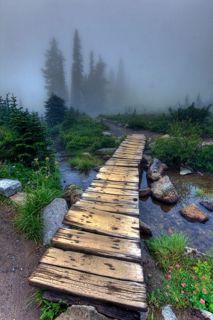 Foggy day at Tipsoo Lake, Mt. Rainier National Park, USA