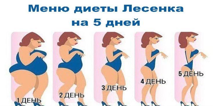 Диета Лесенка Меню На 10 Дней.