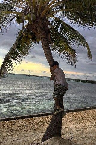 Justin Bieber - Tree-hugging