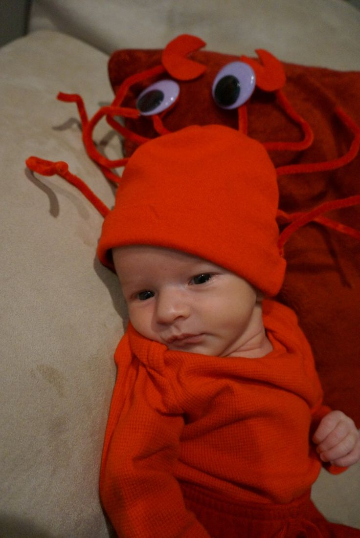 best 25 crab costume ideas on pinterest under the sea costumes