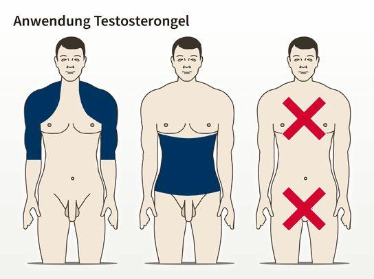 Bisher waren Personen männlichen Geschlechts gezwungen, ihre naturgegebene Testosteronausstattung…