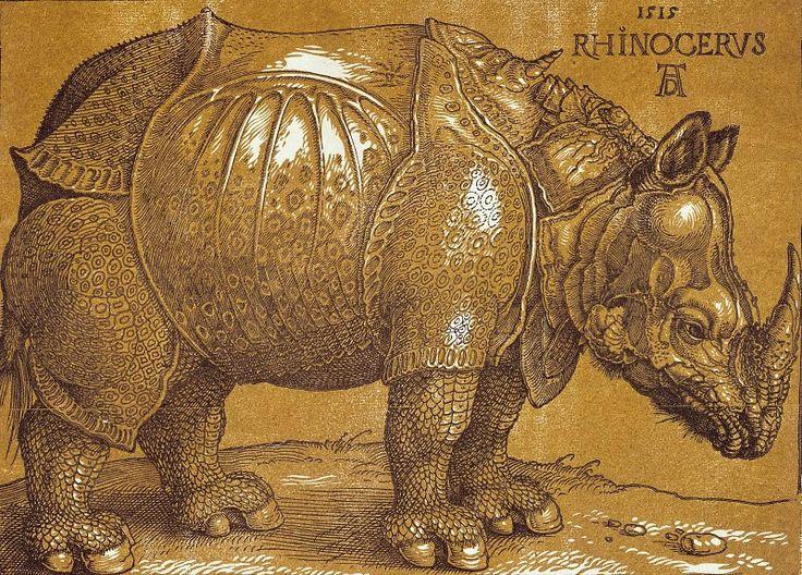 Носорог. Альбрехт Дюрер