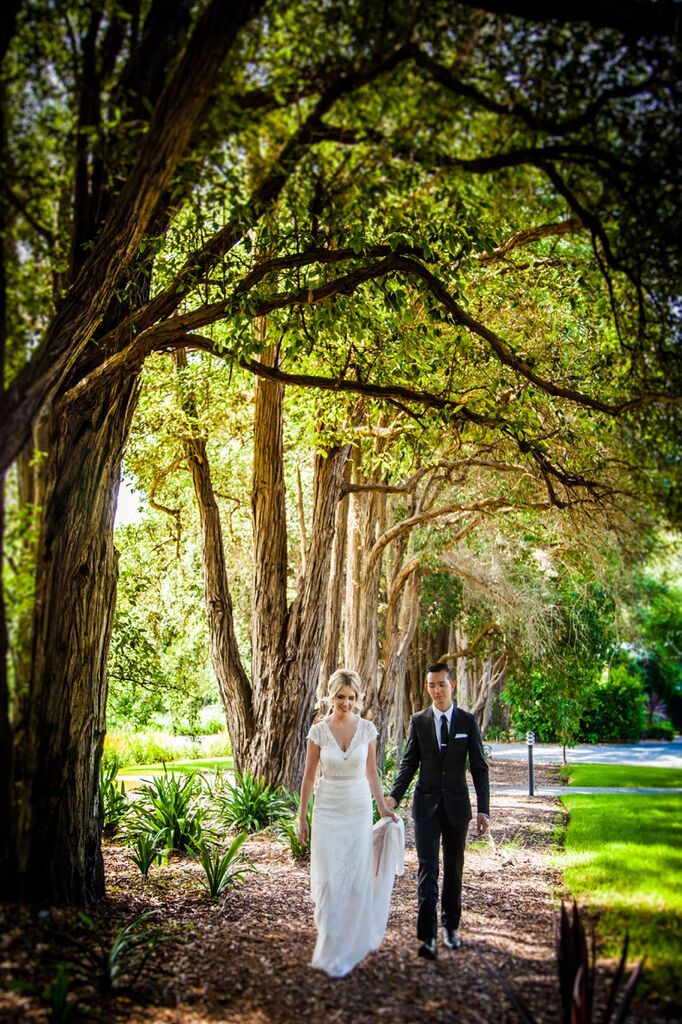 Sarah + Jose stroll under a tree lined canopy #garden #wedding #photos