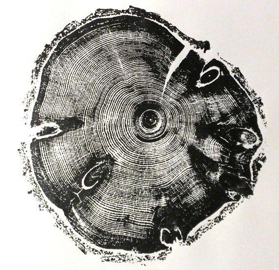 I WANT!!  Knots in the Wood. Cross section cut from a pine. by LintonArt, $30.00