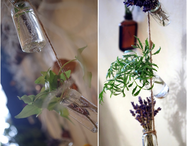 Little odds + ends of flowers, plants, ferns, moss, and mushrooms hanging out at Botany {floral studio}