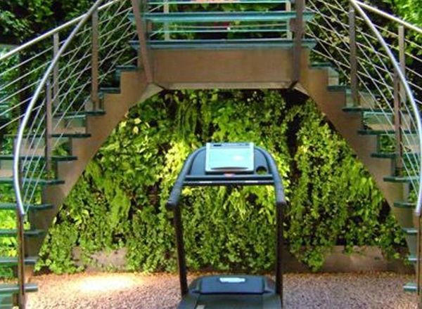 Green Wall At Techno Gym Hanna Packer Design Inc Landscape Design Green Wall Design