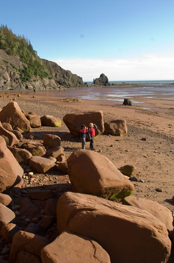 Rocks on the beach at Five Islands Provincial Park, Bay of Fundy, Nova Scotia. I would love to go rock collecting here!