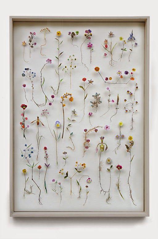 The compositions of artist Anne Ten Donkelaar