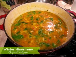 Winter Minestrone - Organic Emily