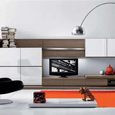 Modern living room entertainment center design for the for 17 x 14 living room