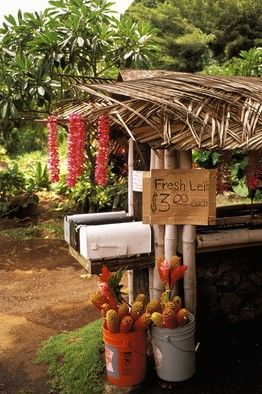 Ginger flowers and leis for sale - Honor System....FOR REAL.....on the way to Hana!