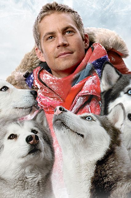 Eight Below Where: Antarctica Brief Summary: A guide embarks on a treacherous trek to find a meteorite with the help of sled dogs.