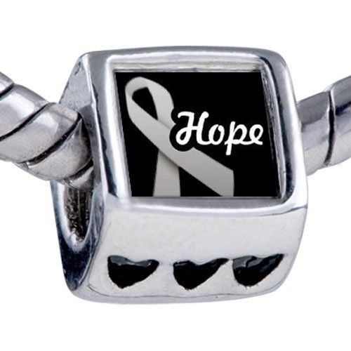 Pugster Hope Ribbon By Amber Beads - Oriana Bead & Bracelet Compatible Pugster. $12.49. It's the photo on the heart charm. Bracelet sold separately. Unthreaded European story bracelet design. Hole size is approximately 4.8 to 5mm. Fit Pandora, Biagi, and Chamilia Charm Bead Bracelets