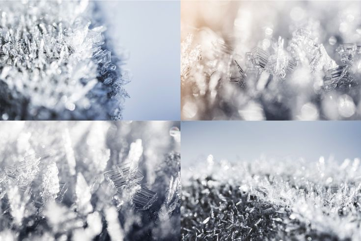frozen-wonderland-preview-1