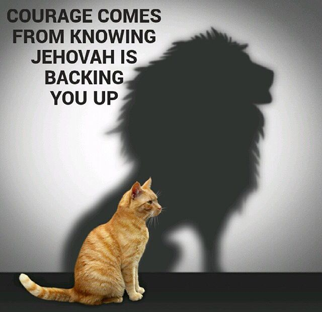 Jehovah is backing u up