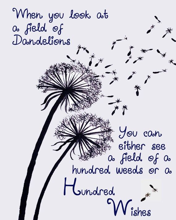 When you look at a field of ...