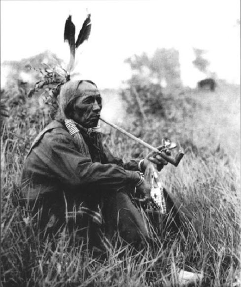 Native Ontario Plants: 223 Best Images About Cree Story On Pinterest