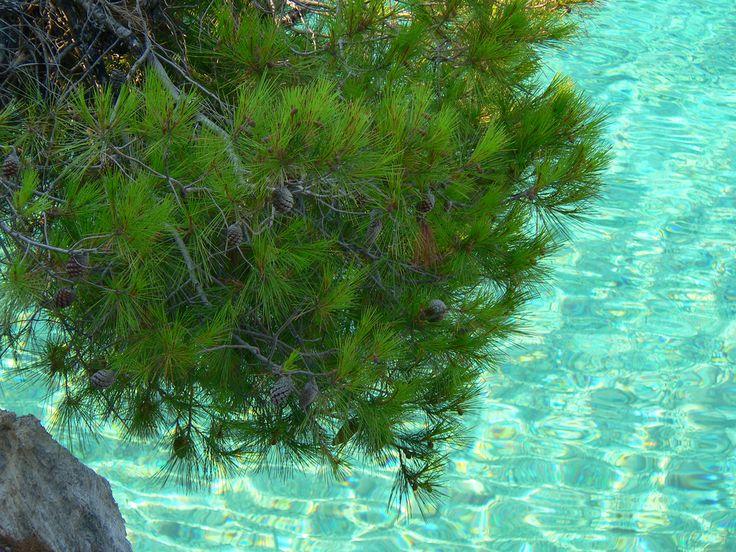 Crystal seas of Skopelos