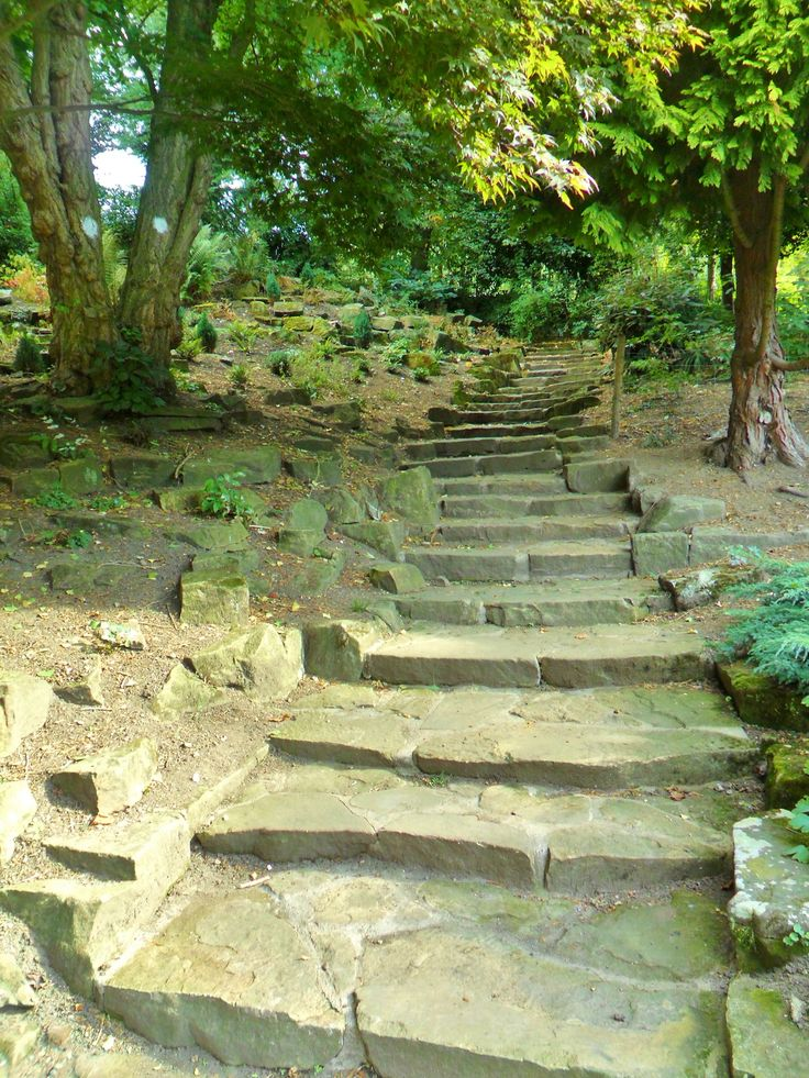 Stone steps though the gardens at Walsall Arboretum, Walsall, England by vwcampervan-aldridge