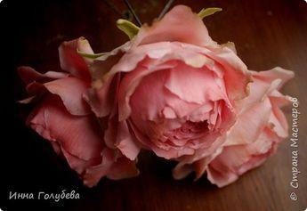Пионовидные розы из х.ф.Мастер- класс.
