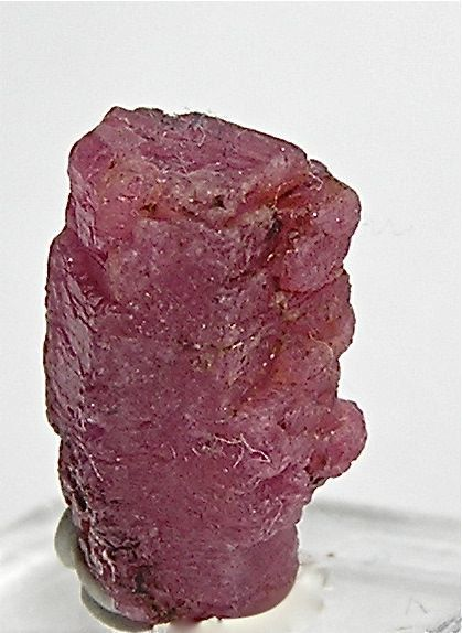 Red Ruby Crystal Mineral Corundum 145 carats by FenderMinerals