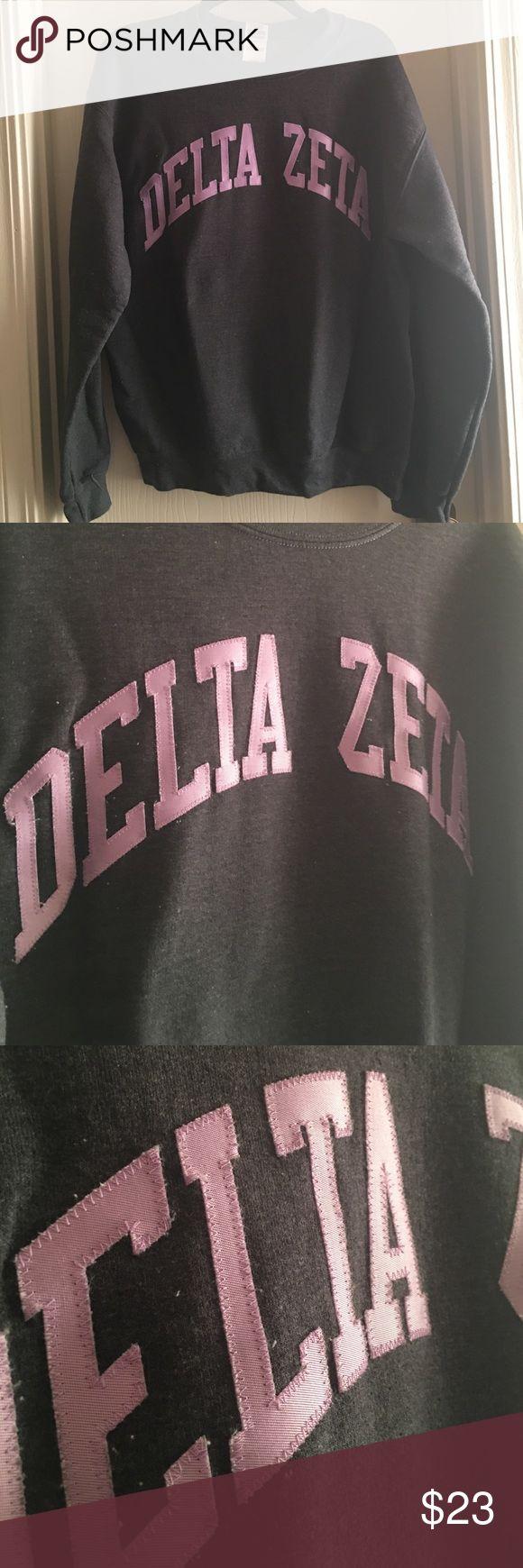 Delta zeta embroidered crewneck Gildan crewneck embroidered lettering, only worn a handful of times. Great condition! Gildan Tops Sweatshirts & Hoodies