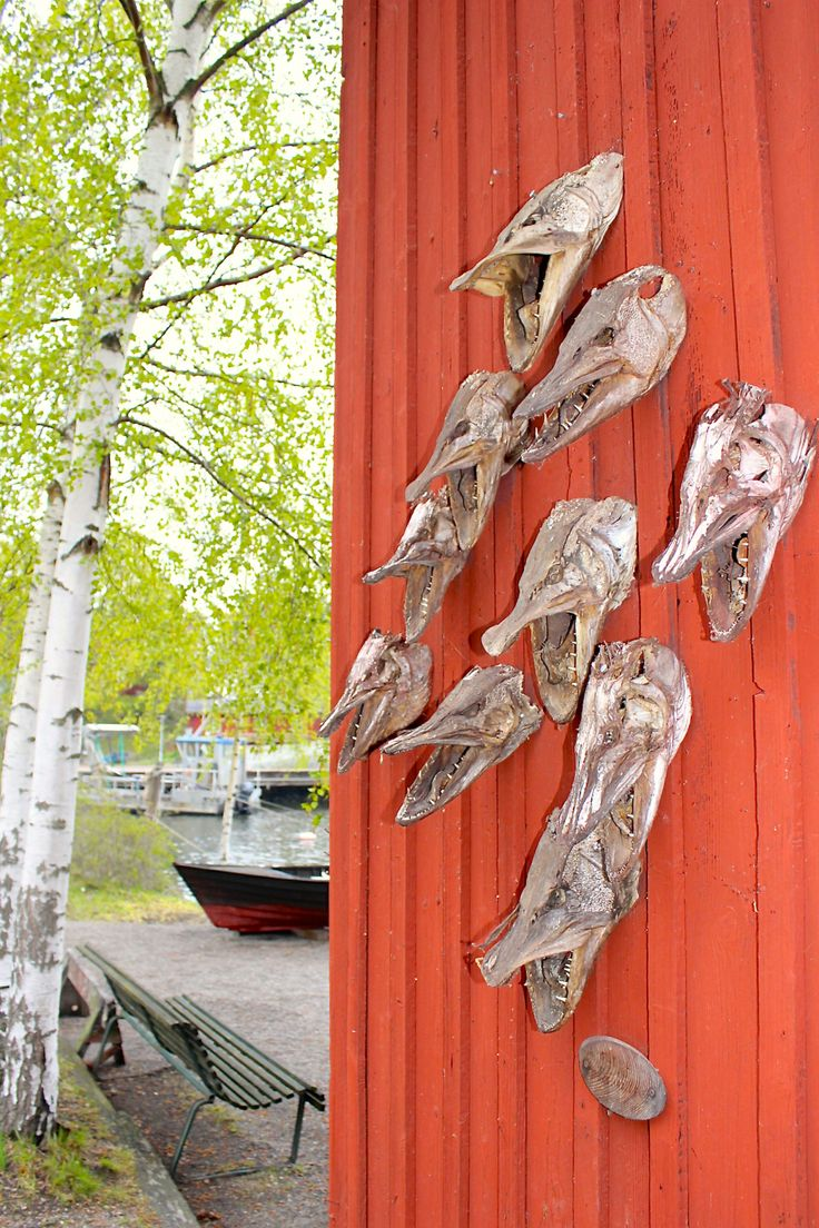 This was a neat display of fish skulls on the outside of a building in Stockholm, Sweden.  I thought the contrast with the scenery and the r...