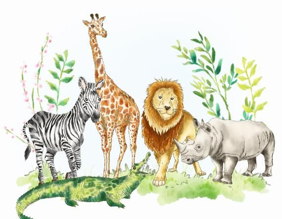 Jungle African Animals Watercolor Clipart Personal Commercial