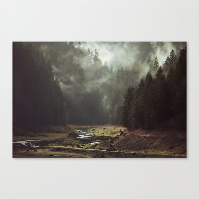 Foggy Forest Creek Stretched Canvas by Kevin Russ - $85.00