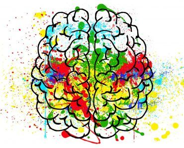 In the healthy brain, during times of stress, kappa opioid receptors bind dynorphin, a natural opiate. This stops feelings dysphoria. PTSD patients differ and marijuana might help.
